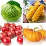 12 dicas de vegetais para emagrecer.