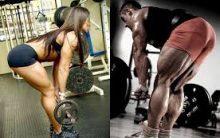 8 Dicas de treino indispensáveis para ganhar massa muscular;