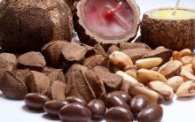10 Benefícios da Castanha do Pará Para a Saúde
