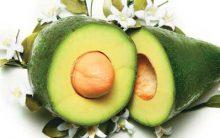 Elimine 5 Kg Em 10 Dias Com a Dieta do Abacate