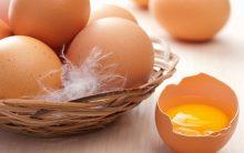 Emagrecer 2 kg Por Dias Com a Dieta do Ovo