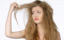 10 Tratamentos Natural Para Acabar Com Cabelos Danificados