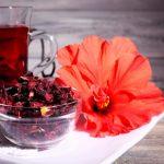 Os 14 Benefícios do Chá de Hibisco Para Saúde