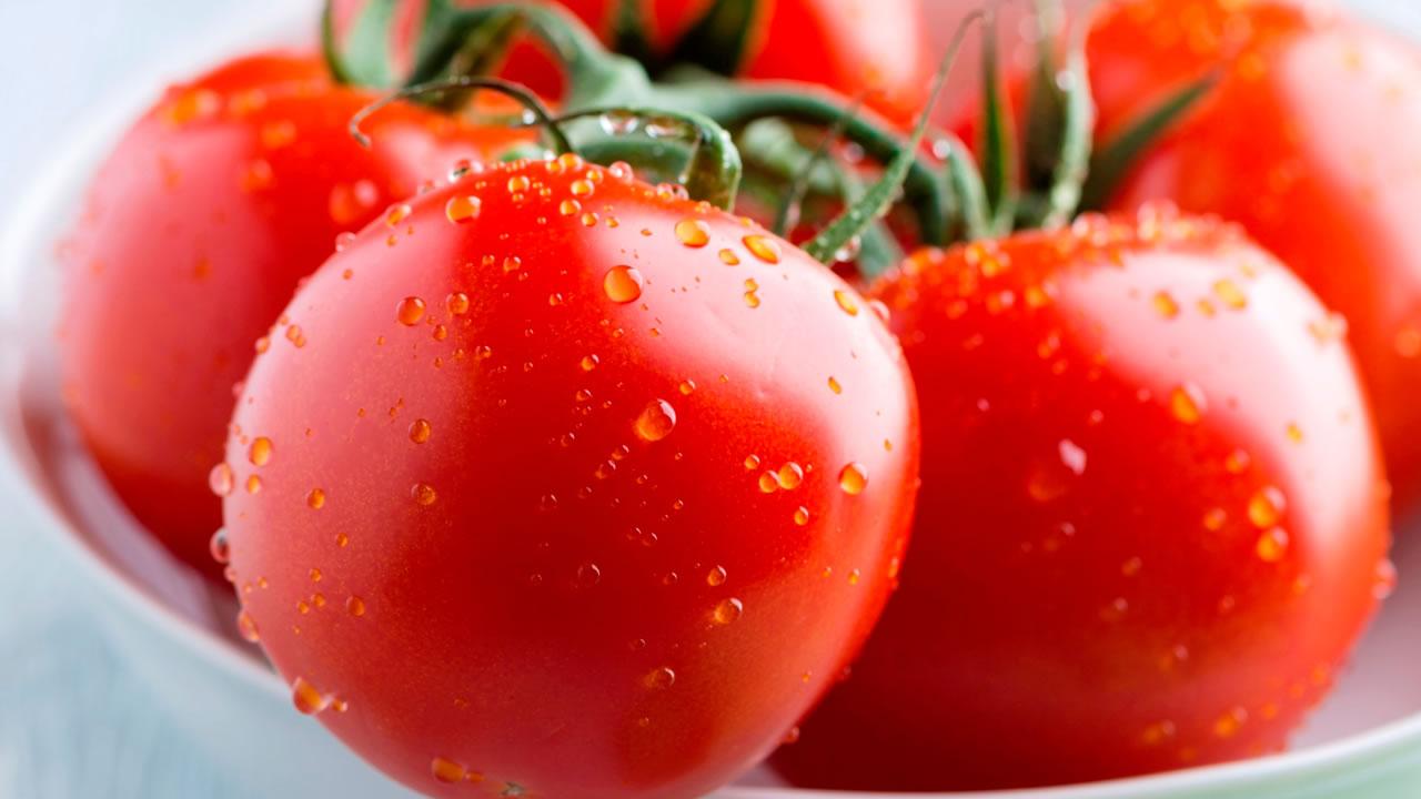 tomate-rasteiro-salada