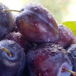 Os 11 Benefícios da Ameixa Para a Saúde