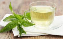 Chá de Hortelã Para Acabar Com a Azia