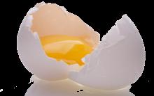 Como Perder 10 kg  Com as 5 Dieta de Ovo