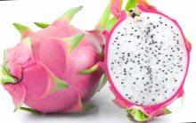 As 15 Dicas da Fruta Pitaia Para Emagrecer