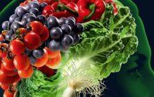 Os 8 Alimentos Ótimos Para a Memória