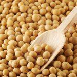 Os 8 Benefícios da Soja Para Organismo