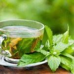 Chá de Hortelã Para Acabar Com Tosse Seca