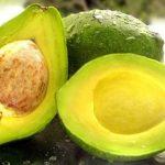 Receita Fitness de Creme de Abacate Com Whey Protein
