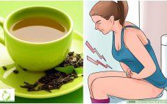 Menstruação- 4 Receita de Chás Para Descer a Menstruação Atrasada.