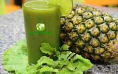 Suco Detox de Abacaxi e Couve