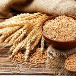 Farelo De Trigo → O Que e, Benefícios e Bom Ou Ruim Para A Sua Saúde